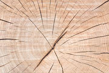 Texture bois naturel.