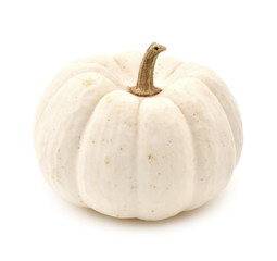 White autumn pumpkin isolated on a white background