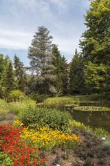 Trees in the botanic garden - enhanced colors