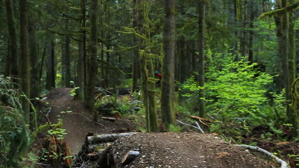 Mountain Biking Jumps