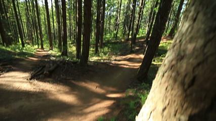 Mountain Biking Jumps Sequence