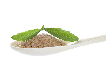 Stevia leaf with spoon of brown sugar