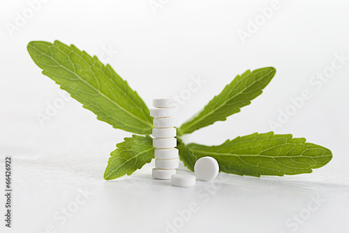 Stevia - plant stevia green leaves and sweetening tablets - 66426922