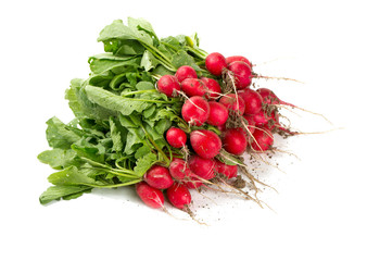 fresh radish isolated on white