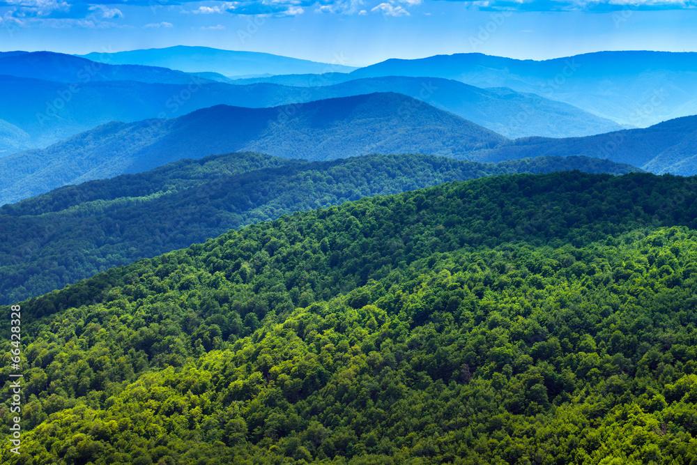 tło panorama natura - powiększenie