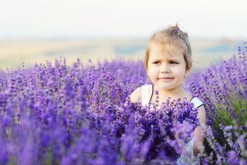 toddler in lavender  field