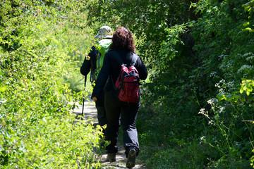 pareja caminando por el campo
