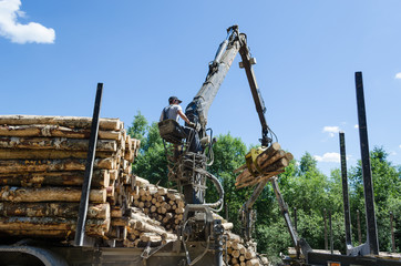 forest worker loading log with crane in trailer