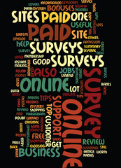Online_Survey_Review
