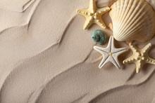 Fond d'été - coquillages sur le sable