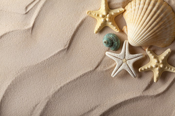 Summer background - shells on sand