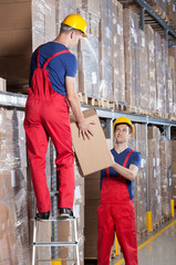 Storekeepers during work in a warehouse