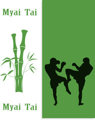 The illustration, two men are engaged in Myai Tai