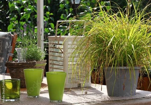 canvas print picture Garten
