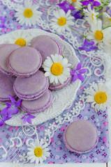 Purple macaroon
