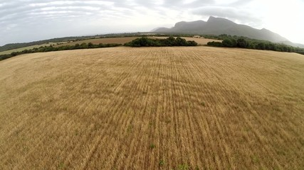 Beautiful Fields of Gold - Aerial Flight, Mallorca
