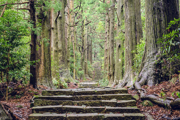 Kumano Kodo in Wakayama, Japan at Daimon Slope