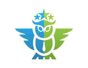 owl logo,wisdom science symbol,knowledge character icon