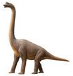 Sauropod dinosaur - 66453307