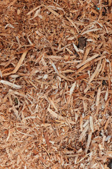 sawdust background shot in daytime