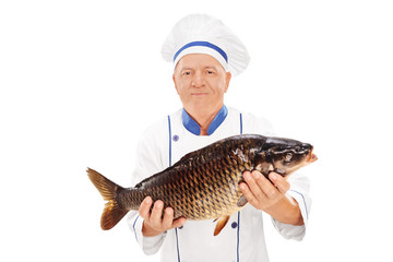 Mature chef holding a fresh chub