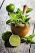 Mojito Ingredients
