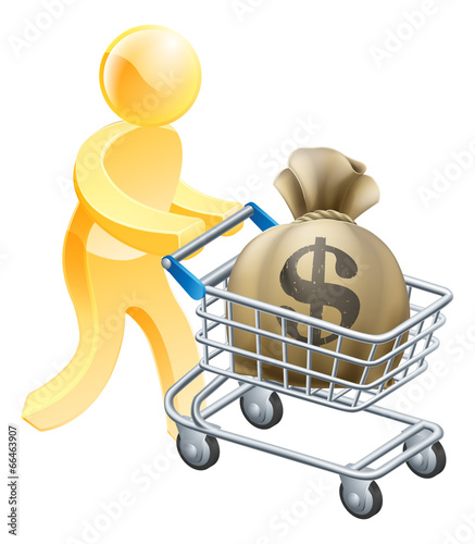 Money shopping cart trolley person