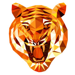 tiger head (tiger anger) by triangles, polygon