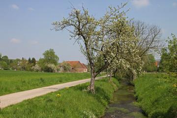 ländliche Idylle im Weserbergland