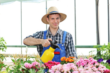 Male gardener watering flowers in a garden