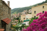 The village of Olmeto on the island of Corsica