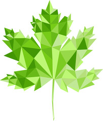 Green maple-leaf by triangles, polygon vector illustration