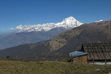 Morning in Baely, view of Dhaulagiri