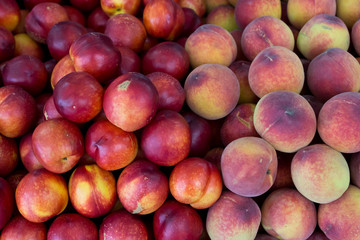 Pfirsiche und Naktarinen