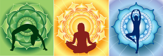 silhouette of yoga girls on bright mandala backgrounds, vector
