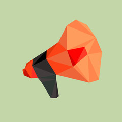Loudspeaker or megaphone by triangles, polygon