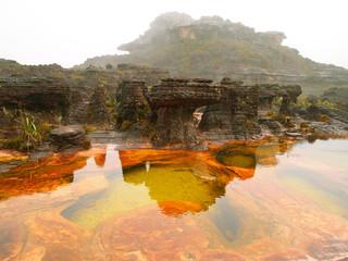Canaima National Park. Venezuela.