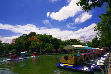Pedal boat on lake in national park with beautiful blue sky