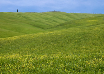 Green hill in Italy