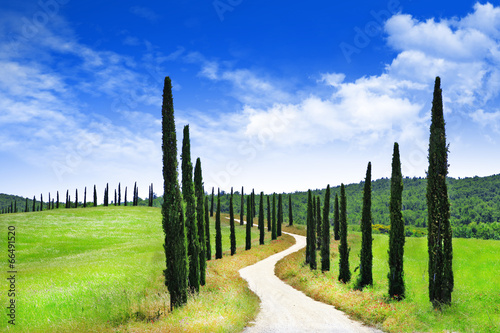 landscapes of Tuscany, Italy - 66491520