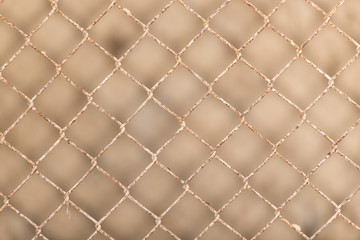 Background of the metal mesh fence