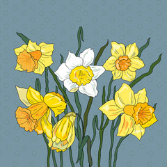 Decorative  background with narcissus
