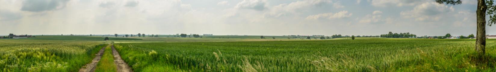Panorama photo of farmland ,Poland