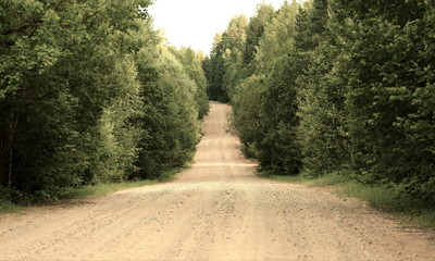 Country road in a wood - instagram effect