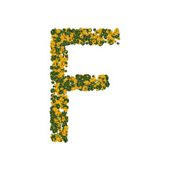 Letter F made from green and yellow bell peppers