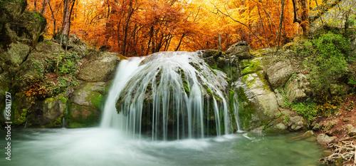 Obraz na Plexi forest waterfall