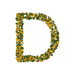 Letter D made from green and yellow bell peppers
