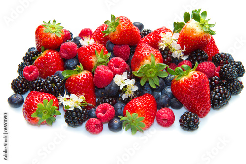 canvas print picture Berries on white Background