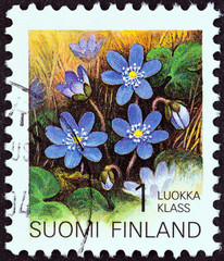 Hepatica (Finland 1993)