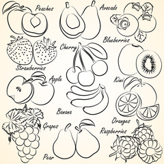 Collection of Fruits doodles vector,illustration